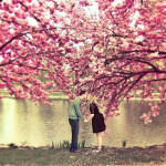 primavera-cursi
